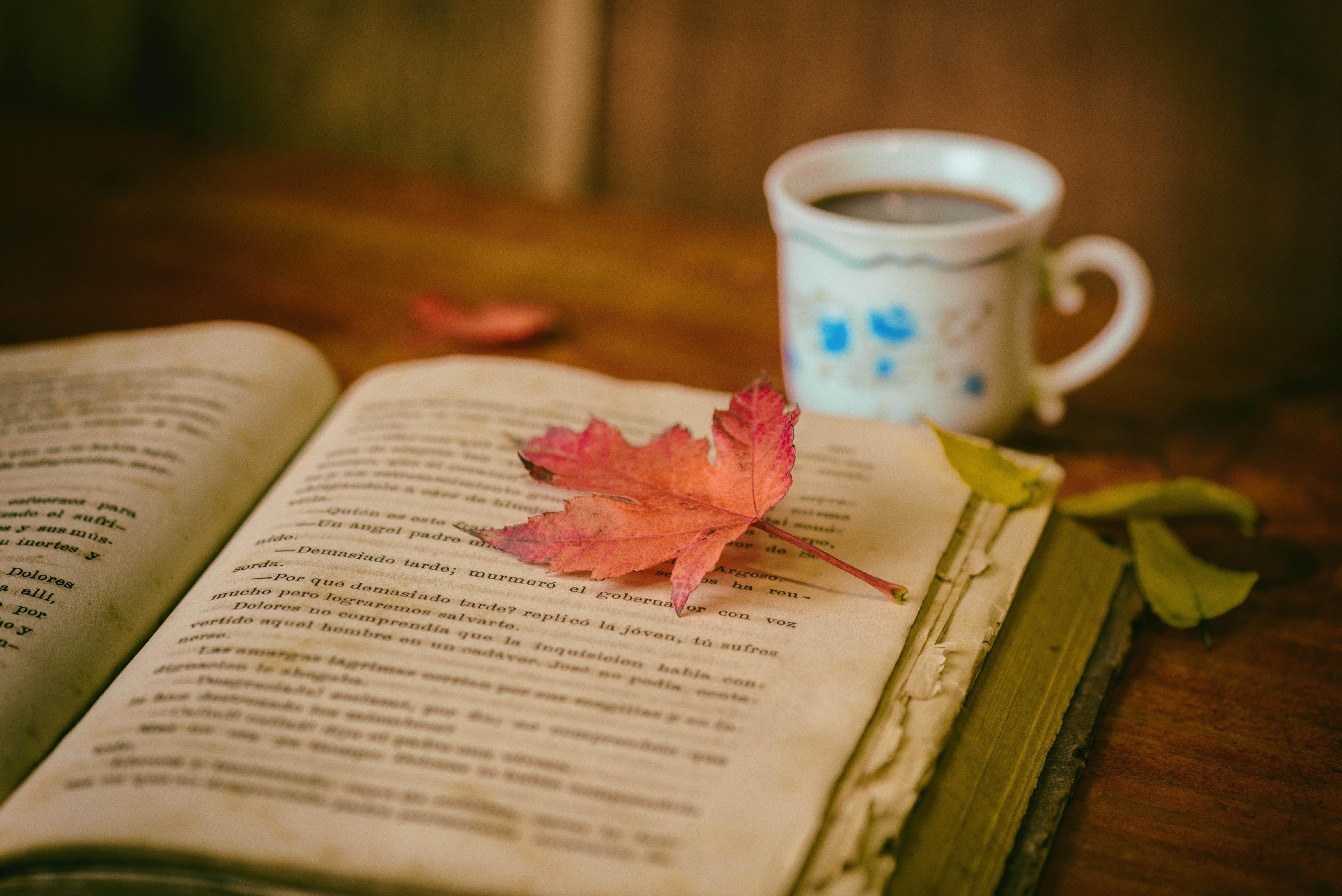 book-leaf